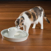 The 72-Ounce Ceramic Pet Fountain - Hammacher Schlemmer