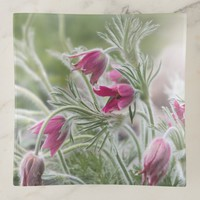 Pasque Floral Trinket Trays