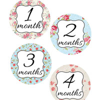 Baby Month Stickers, Shabby Chic, Monthly Onesuit Stickers, Monthly Baby Sticker, Baby Shower Gifts, Baby Month Sticker Girl, G52