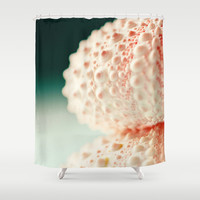 sea urchin series no 2 Shower Curtain by Erin Johnson