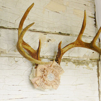 Taxidermy, Deer Antlers, Antler Wall Decor, Antler Wall Mount, Antler Jewelry Rack,Antler Wall Art, Deer Head ,Deer Skull,Real Deer Antlers