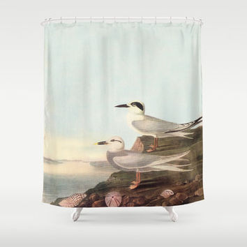 Vintage Coastal Terns Shower Curtain - Water birds -  fabric curtain,  beach, coastal decor, chic,  wildlife, birds, Audubon, bathroom