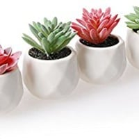 Artificial Plants ,Amyhomie Set of 4 Mini Fake Succulent Plants with Pots for Home Weeding Office Decoration (red and green)