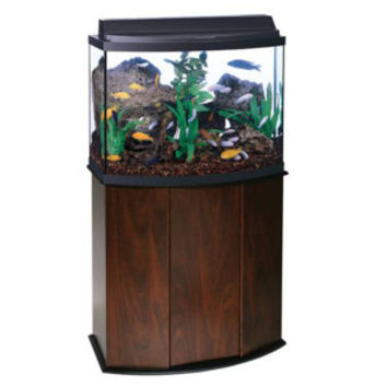 Aqueon® 36 Gallon Bow Front Aquarium Ensemble | Aquariums | PetSmart