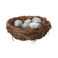 Song Thrush Eggs In Nest