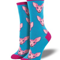 Hairless cat Socks