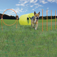 Outward Hound Dog Agility Starter Kit Outdoor