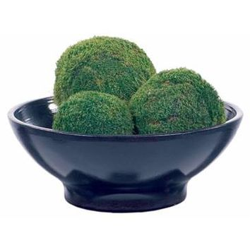 Forever Green Art Moss Ball Set
