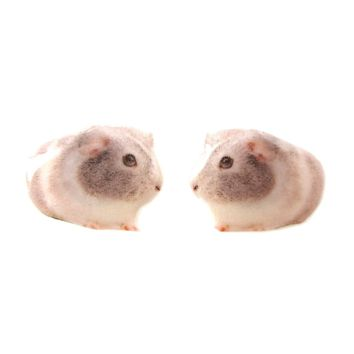Realistic Guinea Pig Shaped Animal Resin Stud Earrings | Made To Order | Handmade