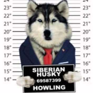 siberian husky t-shirt mens t-shirts dogs mugshot t-shirts mug shirt dog pets tshirt pet lover great gift