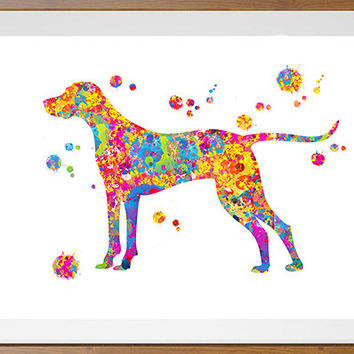 Hungarian Vizsla dog Print 2, Dog Art, Wall Art watercolor gift, Vizsla Magyar Dog long tail illustration  [N155]