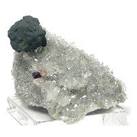 Bornite Crystal on Bright Druzy Clear Quartz Well formed Crystal from Kazakhstan Blue Purple Patina Peacock Ore Mineral Specimen