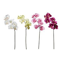 SMYCKA Artificial flower, Orchid assorted colors - IKEA