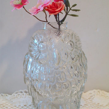 Retro Wise Old Owl Clear Glass Bank