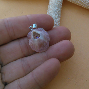 Seashell Necklace Pendant - Real Purple Barnacle with a Swarovski Crystal Inside - Beach Jewelry Pendant for a Necklace
