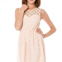 DOTTED LACE SWEETHEART DRESS IN BLUSH