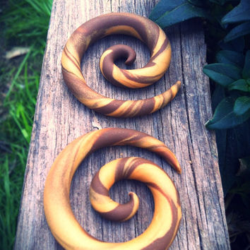 Rich Caramel gauged spiral earrings