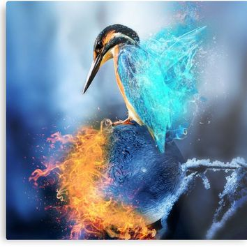 'Kingfisher Ice and Fire by GEN Z' Impression métallique by Gen-Z