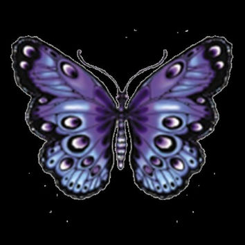 Purple Butterfly T-Shirt Get this Awesome Butterfly Design on a Black or White Shirt Monarch Butterfly