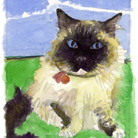 Custom Pet Watercolor Portrait