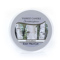 Silver Birch : Scenterpiece™ Easy MeltCups : Yankee Candle