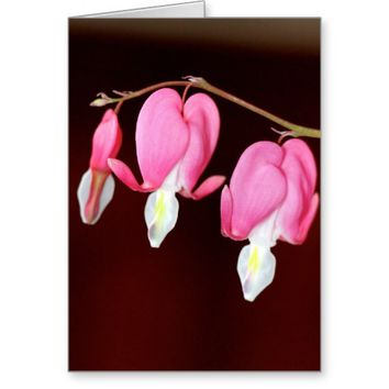 Pink Bleeding Heart Stationery Note Card