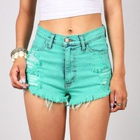 Tinted High Waist Shorts | High Waisted Shorts at Pink Ice