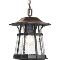 Progress Lighting Derby Collection 1-Light Outdoor Espresso Hanging Lantern-P5579-84 at The Home Depot