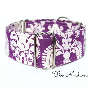 1 inch, 1.5 inch and 2 inch martingale dog collar, italian greyhound collar, whippet collar, greyhound collar, purple martingale dog collar