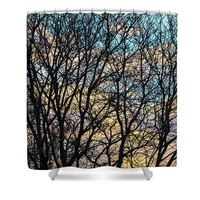 Tree Branches And Colorful Clouds Shower Curtain