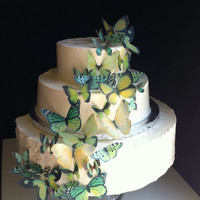 The Original EDIBLE BUTTERFLIES  Assorted Green set by SugarRobot
