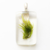 Real Moss Pendant, Clear Resin with Preserved Moss Jewelry
