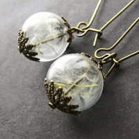 Real Dandelion Wish Earrings Hand Blown Glass Orb Beads Globe - MAKE A WISH