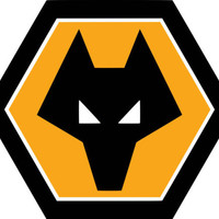 Wolverhampton Team Crest Iron on Screen Print fabric Machine Washable transfer | eBay