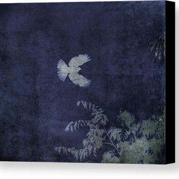 Doves Flight Indigo Canvas Print