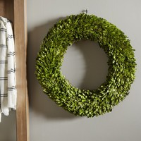 Preserved Boxwoods Preserved Wreath