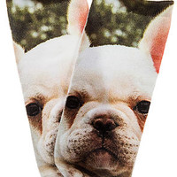 Intimates Boutique Sock French Puppy