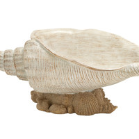 Captivating Shell Bowl
