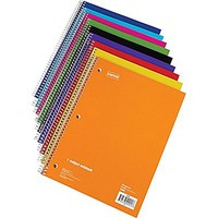 Staples® Subject Notebook, 8