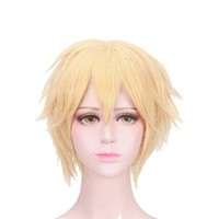 Anime Miraculous Ladybug Cat Noir Wig Cosplay Costume Adrien Men & Women Short Hair Halloween Synthetic Wigs
