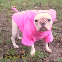 French Bulldog Boston Terrier Pug Dog Froodies Hoodies Halloween Costume Piggy