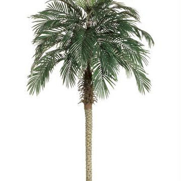 2 Artificial Palm Trees - Pheonix