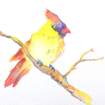Original Watercolor, Cardinal Bird, 5x7, female cardinal, perched bird