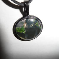 Made-to-Order How to Train Your Dragon Inspired Toothless Necklace