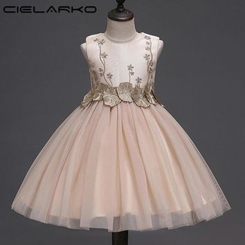 Cielarko Girls Flower Dress Baby Birthday Party Dresses Elegant Applique Children Princess Frocks Wedding Gowns Clothes for Girl