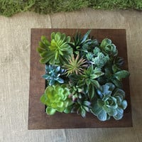 Succulent arrangement/ faux succulent/ arrangement/ modern arrangement/ coffee table arrangement/ entryway arrangement/ dining room table