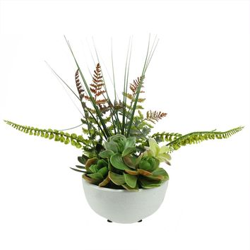 """11.5"""" Artificial Mixed Red and Green Succulent and Fern Plants in a White Crackle Finish Bowl Pot"""