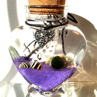 Marimo valentines day terrarium, A marimo for love and luck, japanese love plant, free 2nd marimo moss ball included