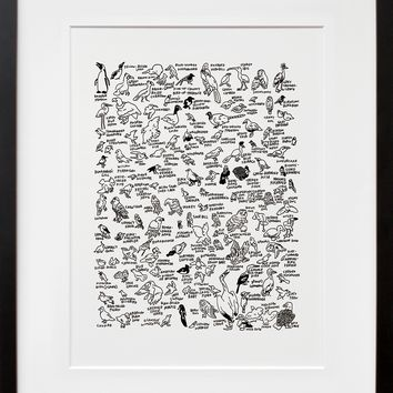 132 Birds at The American Museum of Natural History (Framed + Ready To Ship)