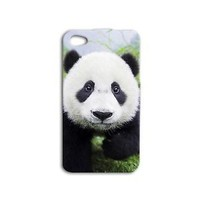 Fun Adorable Cute Baby Panda Phone Case iPhone Plus iPod Cover Bear Black White